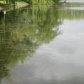 Івано-Франківське міське озеро можуть засипати вже найближчим часом