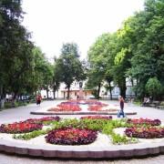 """В Івано-Франкіську невідомі знищили світлодіодну інсталяцію """"Пісня дерев"""" (фото)."""
