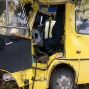 У Львові автобус в'їхав у дерево: офіційні подробиці та фото з місця ДТП (фото)