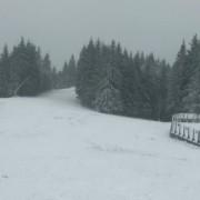 """""""Буковель"""" замітає снігом (відео)"""