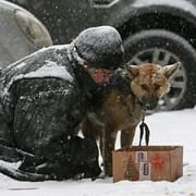 Франківців просять допомогти зібрати теплі речі для безхатьків