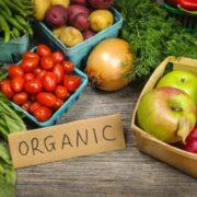 Німецький підприємець створить демонстраційну органічну ферму на Тлумаччині