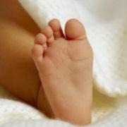 У Запоріжжі на пустирі вівчарка знайшла покинуте немовля (ВІДЕО)