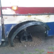 """Дякую Богові, що жива, – прикарпатка розповіла, як у рейсового автобуса """"Івано-Франківськ – Верховина"""" відлетіло колесо (фото)"""