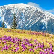 Неймовірна краса весняних Карпат (відео)