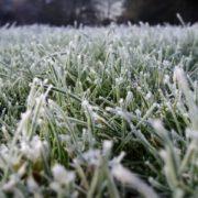 Прикарпатців попереджають про заморозки та сильний вітер