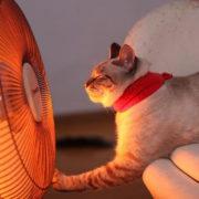 В Івано-Франківську запустили трохи більше половини котелень. Третина мешканців – без опалення
