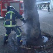 У центрі Франківська вночі підпалили дерево. ФОТОФАКТ