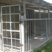Як собак: в інтернаті на Черкащині літніх людей тримають в вольєрі на вулиці