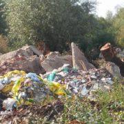 Грандіозний смітник на Бистриці Солотвинській