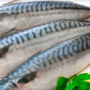 В Івано-Франківську жінка придбала у магазині рибу з личинками і хробаками (фотофакт)
