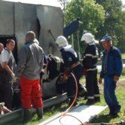 Стали відомі подробиці ДТП на Франківщині, в якій перекинулася вантажівка зі свинями (фото)