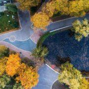 Мер Франківська оприлюднив вражаючі фото осіннього міського парку. ФОТО