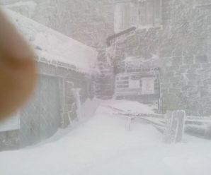 Сніг та мороз: у Карпати прийшла справжня зима (фото, відео)