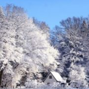 Синоптики прогнозують перший сніг уже на початку тижня