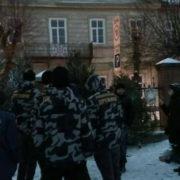 Новорічна контрабанда: у Франківську продають ялинки без чіпів