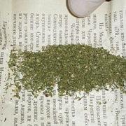 У Калуші у водія-порушника виявили наркотики