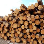 На Прикарпатті впіймали вантажівку з краденим лісом