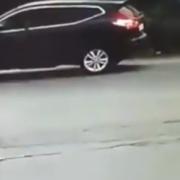 Не виходячи зі свого авто, нелюд застрелив собаку (відео 18+)
