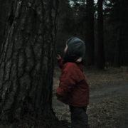 На Прикарпатті шукають зниклого 4-річного хлопчика