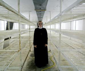 Стартап, сестро. На Прикарпатті монахині вирощують шампіньйони, роблять макарони та встановлюють сонячні колектори (фото)