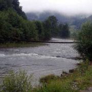 У рибінспекції Прикарпаття назвали річки, у яких заборонений вилов риби (список)