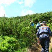 На Верховинщині у горах травмувалося двоє туристів