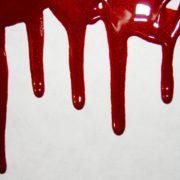 Вечірка на роботі і кривавий фінал: стали відомі подробиці вбивства директором свого підлеглого на Прикарпатті (відео)