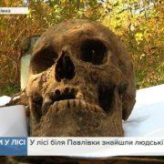 У лісі на Прикарпатті знайшли останки чотирьох людей (відео)