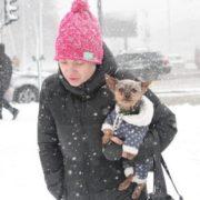 За кілька днів в Україні вдарить сильний мороз та випаде сніг