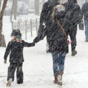 Штормове попередження: в Івано-Франківській області очікується посилення вітру, на дорогах ожеледиця