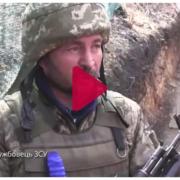Як чотирилапі друзі допомагають українським захисникам на війні