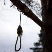 На Прикарпатті повісився на дереві чоловік