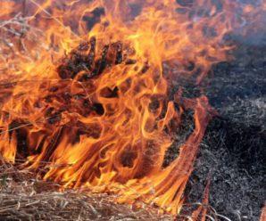Хотіли спалити траву біля хати: Літнє подружжя згоріло живцем під час паління сухостою