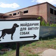 У Калуші встановлять два майданчики для вигулу собак