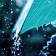 Штормовий вітер, грози, дощі. На Прикарпатті оголошено штормове попередження
