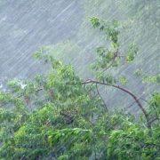 Град і грози: на Прикарпатті оголошено штормове попередження