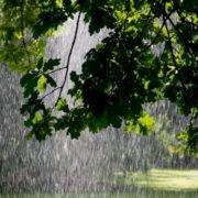 До +30, дощі, загроза врожаю: синоптик дав прогноз погоди на травень