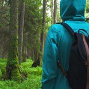 На Прикарпатті два дні шукають чоловіка, який пішов у ліс та не повернувся