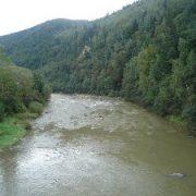 На Прикарпатті шукають дитину, яка стрибнула у річку і зникла