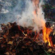 МОЗ хоче заборонити вигрібні ями, спалювання листя та посипання доріг сіллю