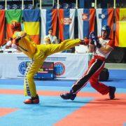 Франківські студенти здобули 7 медалей на чемпіонаті Європи з бойових мистецтв