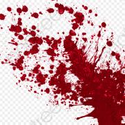 У Калуші засудили чоловіка, який підірвав собаку гранатою