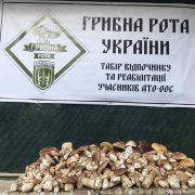 """""""94 кілограми білих"""": на Верховинщині вродили гриби"""