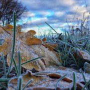 На Прикарпаття наближається сильний вітер та заморозки