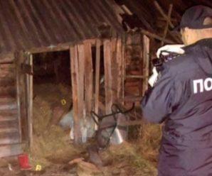 У смерті звинуватила матір: у селі маленька дівчинка вчинила самогубство після бійки батьків, страшні деталі