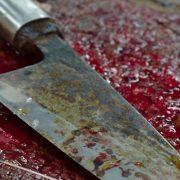 Встромив ніж прямо в серце: повідомили страшні деталі звірячої різанини 14-річним хлопцем(відео)