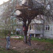 """У центрі Калуша з'явився """"будинок на дереві"""". ФОТО"""