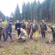 На Верховинщині бійці АТО разом з лісниками висадили молодий ліс