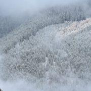 На горі Піп Іван у Карпатах випало до пів метра снігу